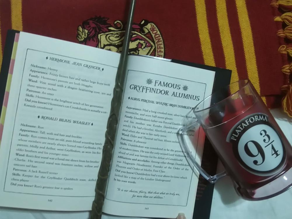 Edição Comemorativa de 20 anos de Harry Potter e a Pedra Filosofal